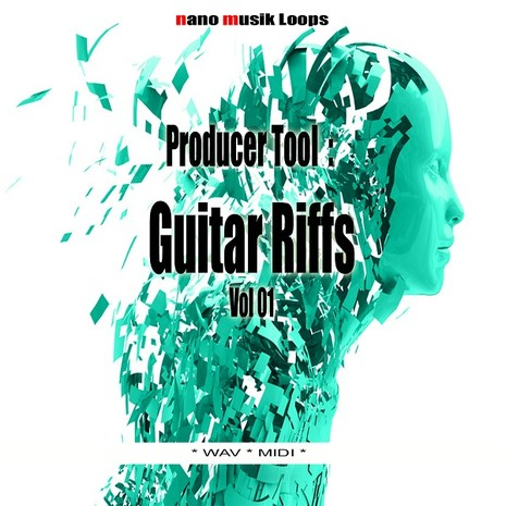 Producer Tool: Guitar Riffs