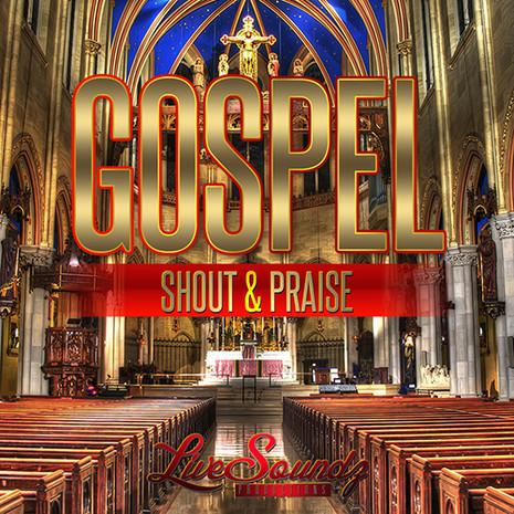 Gospel Shout & Praise Vol 1