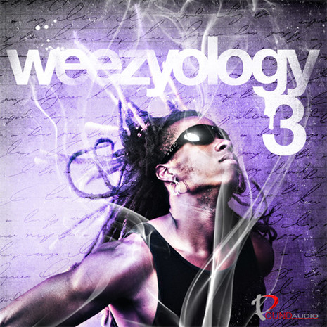 Weezyology 3: Dirty South