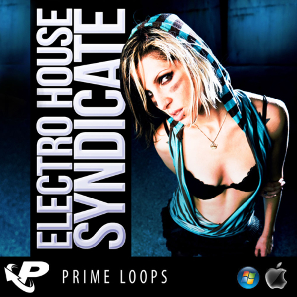 Electro House Syndicate