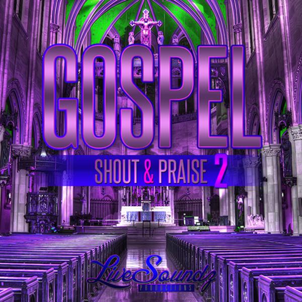 Gospel Shout & Praise Vol 2
