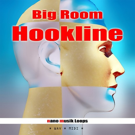 Big Room Hookline