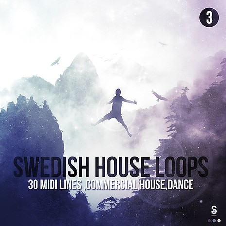 Swedish House Loops Vol 3