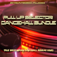 Pull Up Selector: Dancehall Vibes Bundle
