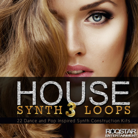 House Synth Loops 3