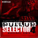 Pull Up Selector: Dancehall Vibes Vol 4