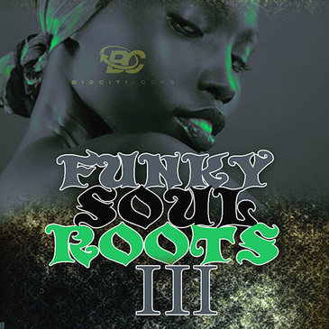 Funky Soul Roots 3