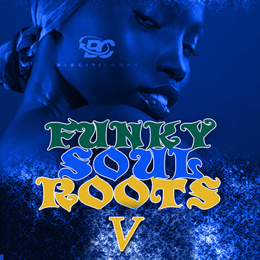 Funky Soul Roots 5