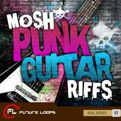 Mosh: Punk Guitar Riffs
