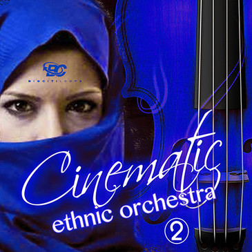 Cinematic Ethnic Orchestra 2