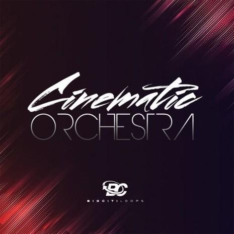 Cinematic Ethnic Orchestra