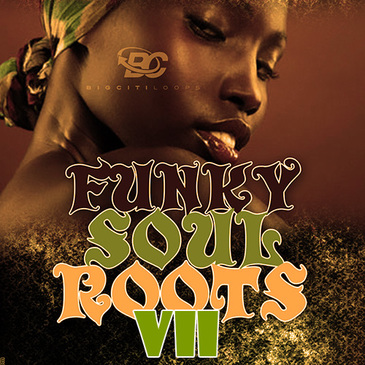 Funky Soul Roots 7