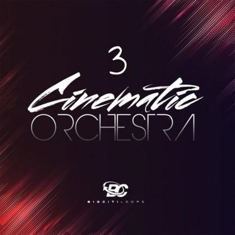 Cinematic Ethnic Orchestra 3