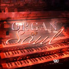 Organ Of Soul