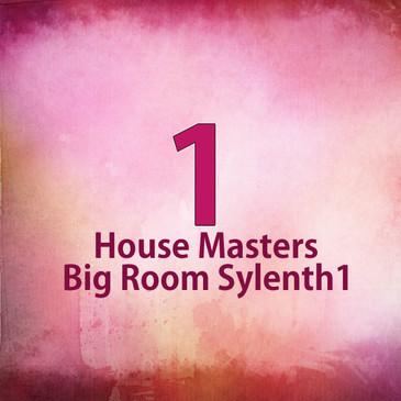 House Masters Big Room Sylenth1
