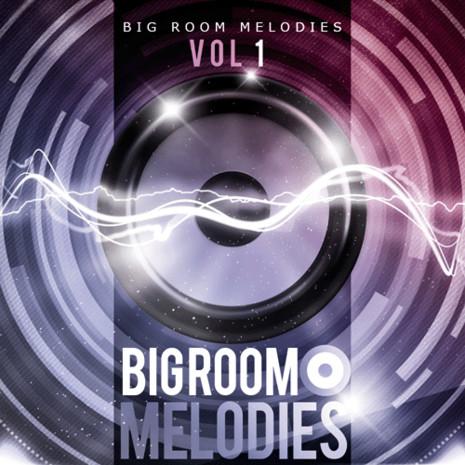 Big Room Melodies Vol 1