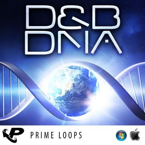 D&B DNA