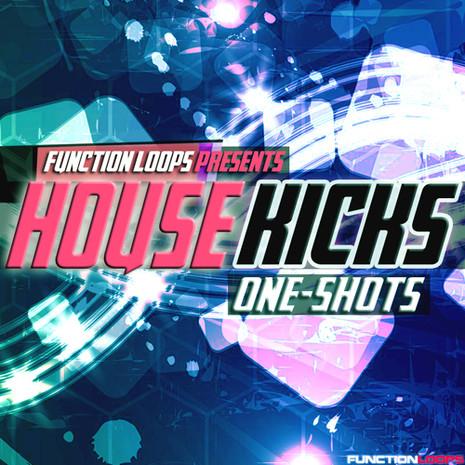Function Loops: House Kicks