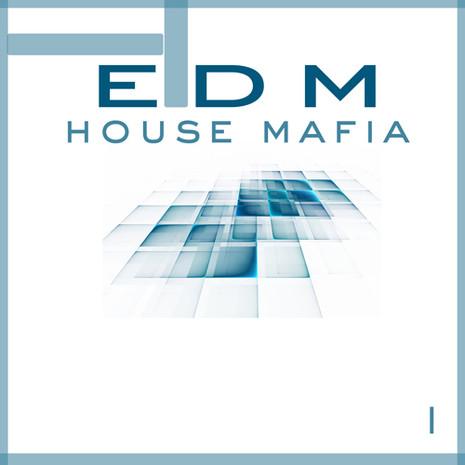 EDM House Mafia Vol 1