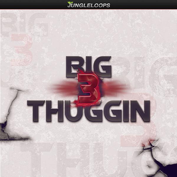Big Thuggin' 3