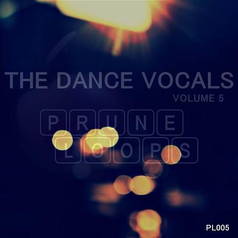 The Dance Vocals Vol 5