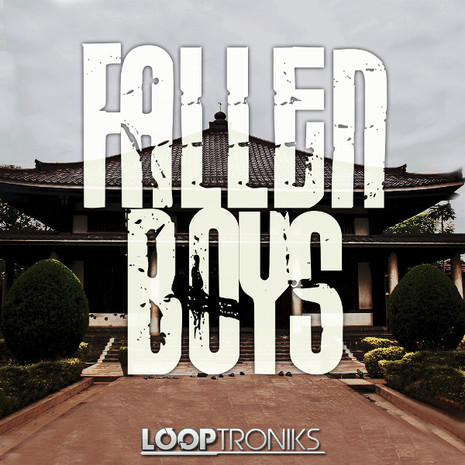 Fallen Boys