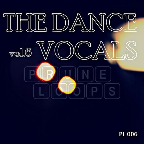 The Dance Vocals Vol 6