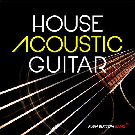 House Acoustic Guitar