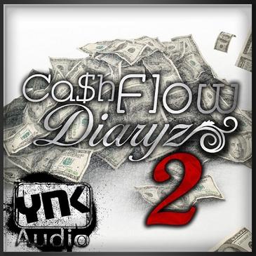Cash Flow Diaryz 2