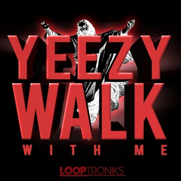 Yeezy Walk With Me