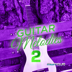 Guitar Melodies 2