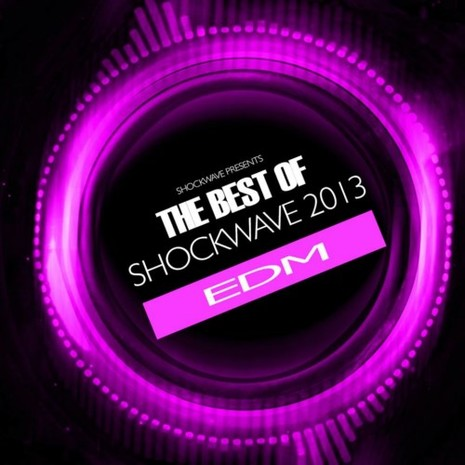 Play It Loud: The Best Of EDM 2013