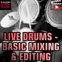Live Drums: Basic Mixing, Editing & Clean Ups