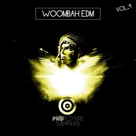 Woombah EDM Vol 4