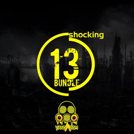 Shocking Bundle 13