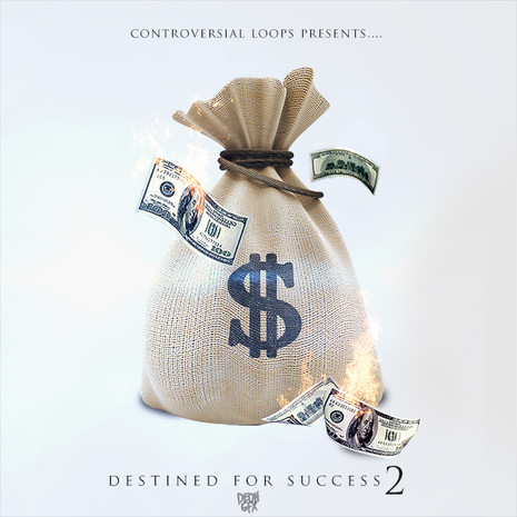 Destined For Success 2