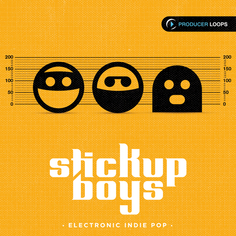 Stick Up Boys: Electronic Indie Pop
