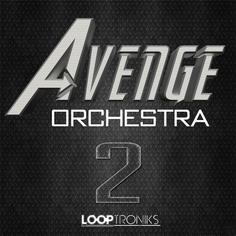 Avenge Orchestra 2