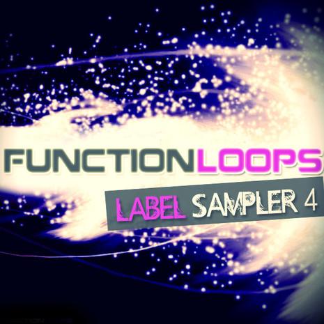 Function Loops Label Sampler 4