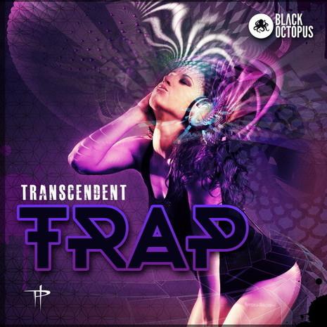 Paradigm Theorem: Transcendent Trap