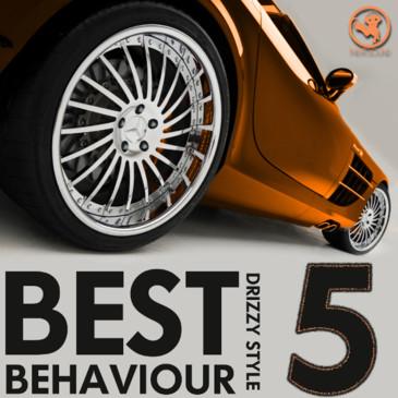 Best Behaviour 5