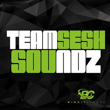 Teamsesh SoundZ