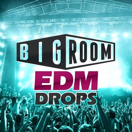 Big Room EDM Drops