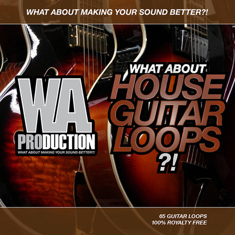 What About: House Guitar Loops