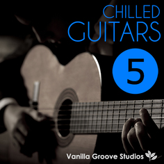 Chilled Guitars Vol 5