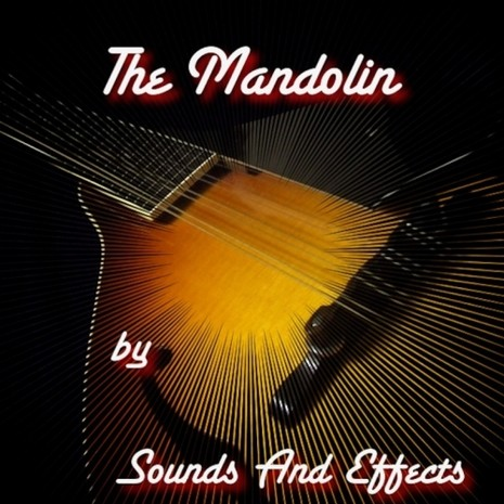 The Mandolin
