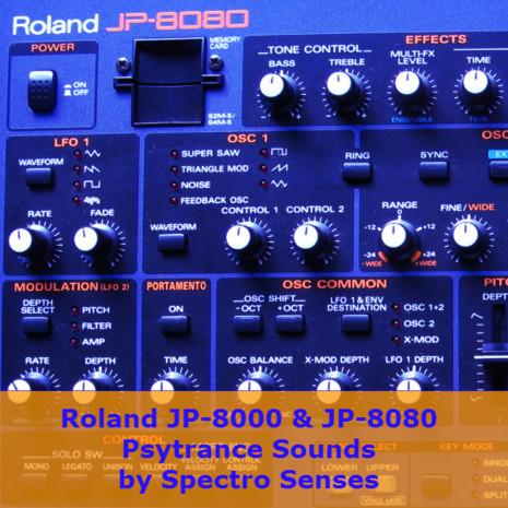 JP-8000 & JP-8080 Psytrance Sounds