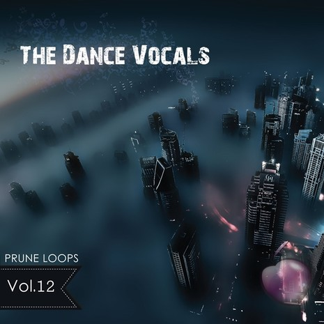 The Dance Vocals Vol 12