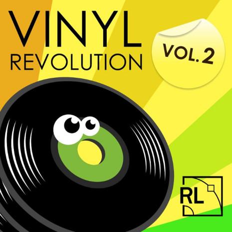 Vinyl Revolution Vol 2