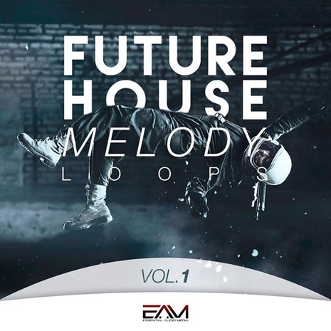 Future House Melody Loops Vol 1